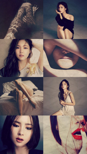 Shin Se Kyung wallpaper entitled ♥ Shin Se Kyung ♥