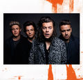 1D'S 2017 CALENDAR  - one-direction photo