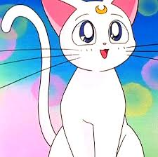 Artemis Mina s Cat Who Is Also A Guardian of the Sailor Scouts