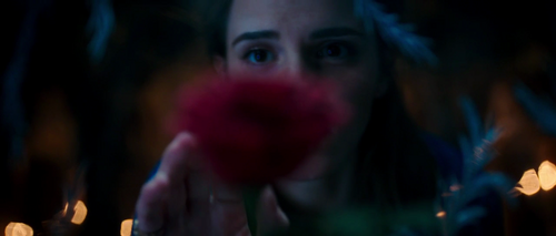Beauty and the Beast (2017) Hintergrund probably with a bouquet titled Beauty and the Beast (2017) Trailer