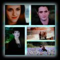 twilight-series - Bella Edward and Alice wallpaper