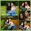 twilight-series - Bella and Jacob  wallpaper