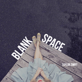 Blank Space - taylor-swift fan art