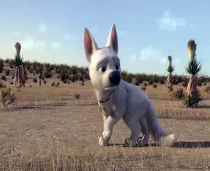 Walt Disney Screencaps - Bolt
