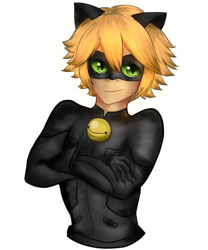 Miraculous Ladybug Обои called Chat Noir