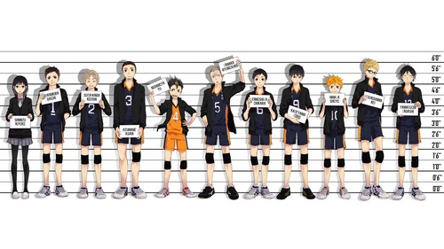 Haikyuu!!(High Kyuu!!) 壁纸 entitled Haikyuu!! 壁纸
