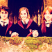 Harry, Hermione and Ron - harry-potter icon
