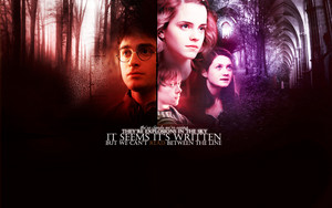 Harry Potter Обои ♥