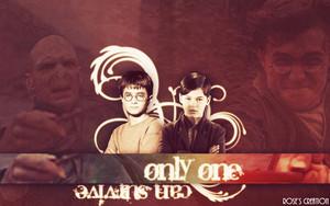 Harry Potter Обои ♥