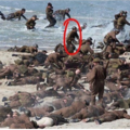 Harry acting on the set of Dunkirk/Dunkerque - harry-styles photo