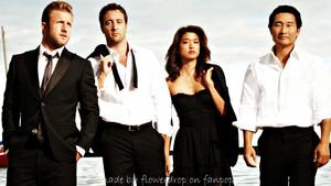 Hawaii Five-O Hintergrund