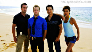 Hawaii Five-O fondo de pantalla