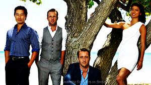 Hawaii Five-O fond d'écran