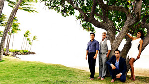 Hawaii Five-O achtergrond