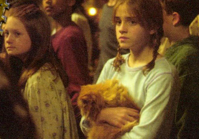 Hermione Granger wallpaper titled Hermione and Ginny