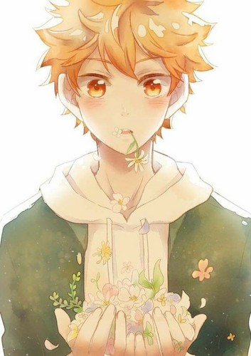 Haikyuu!!(High Kyuu!!) 壁纸 possibly containing a bouquet entitled Hinata