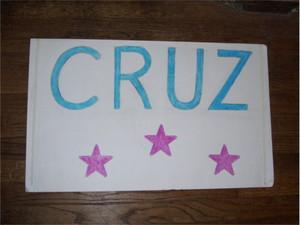 Homemade Cruz Sign