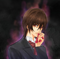 Kuran.Kaname.full.710931 - vampire-knight photo