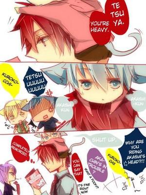 Kuroko kitty loves Akashi
