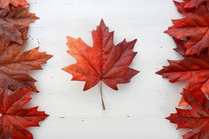 Leaf Canada Flag