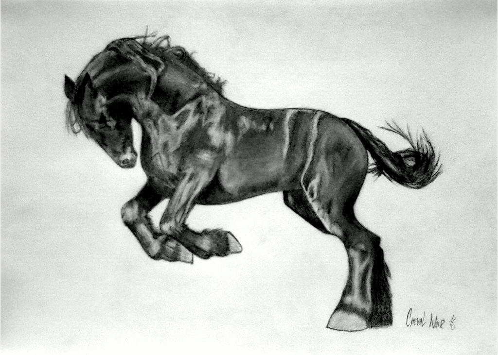 My sturdy pony-Real Big Macintosh