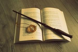 Nina Skaret Book Wand ZERrRw