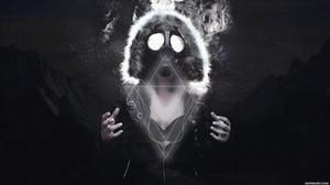 Panda musique .. dubstep