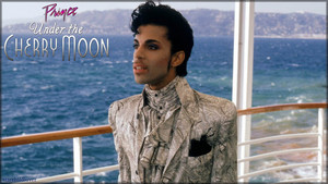 Prince ~Under the cerise Moon