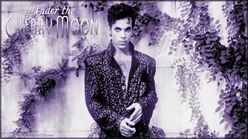 Prince wallpaper possibly containing a well dressed person, a business suit, and a show, concerto called Prince ~Under the cereja Moon