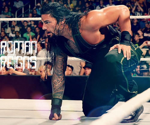 WWE wallpaper called Roman Reigns wallpaper 10752023