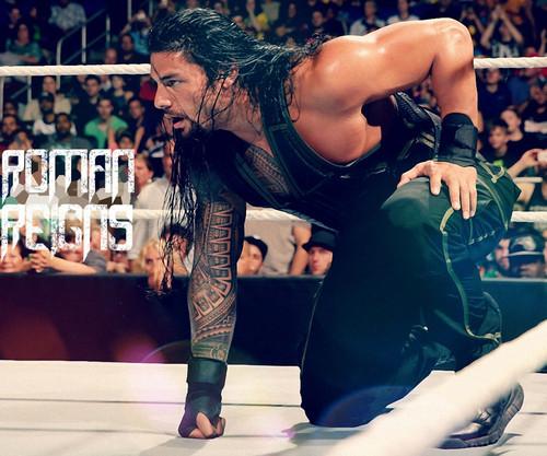 WWE kertas dinding called Roman Reigns kertas dinding 10752023
