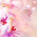 Sailor Chibimoon - sailor-moon icon
