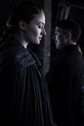 Sansa Stark Wallpaper Entitled Season 6
