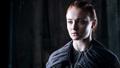 Sansa Stark Season 6 - sansa-stark photo