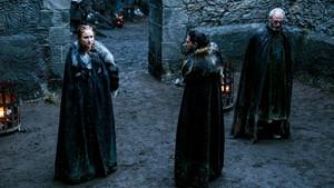 Sansa Stark Season 6
