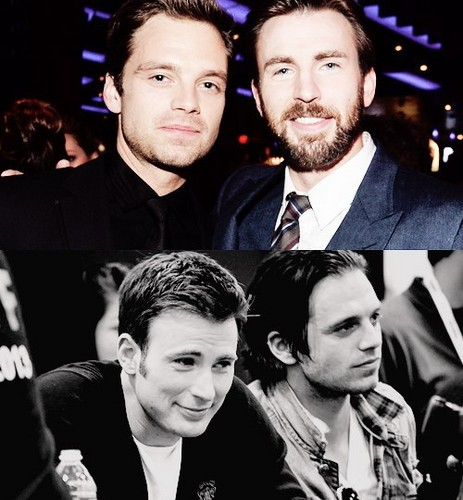 Chris Evans & Sebastian Stan 壁紙 containing a business suit entitled Sebastian Stan and Chris Evans