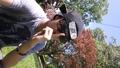 Shadow Clone KickYourAss Jutsu! - naruto photo
