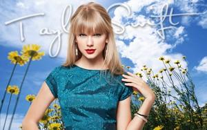 Taylor 13