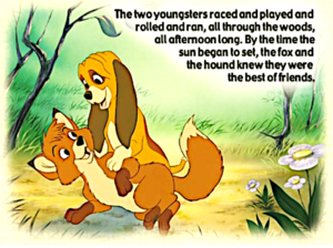 The renard and the hound book