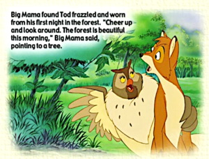 The fox and the hound book