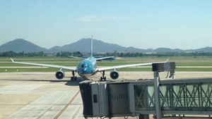 Vietnam Airlines A330 and A321 at NIA