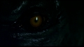 Werewolf Eye - werewolves photo