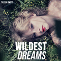 Wildest Dreams - taylor-swift fan art