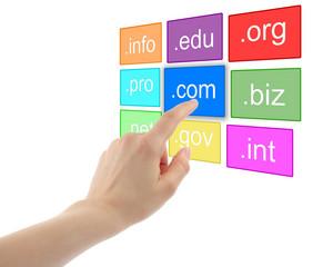 domain name registration Website Hosting