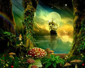dream world door funkwood