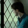 icons - harry-potter photo