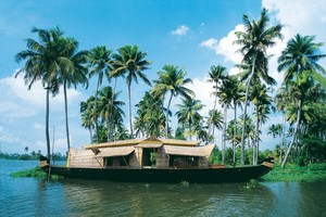 kerala backwaters greenery small