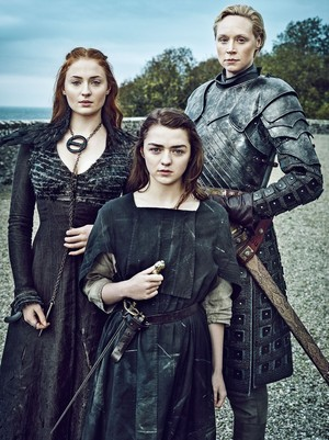sansa and arya with brinne