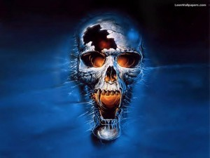 scary skull hình nền skulls 8007343 1024 768