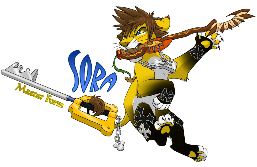 Lion Sora From Kingdom Hearts 2 images sora master form by ...